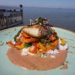 Mahi over Coconut Rice at AQUA Restaurant